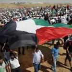 palestina retorno